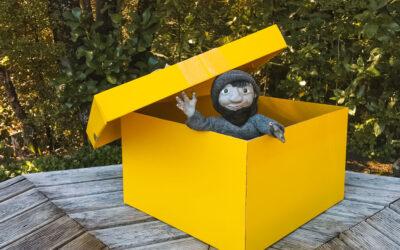 The Box…